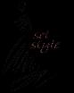 setstyle